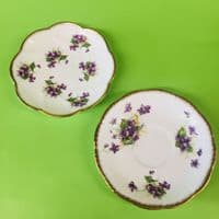 Salisbury China | Violets | Duo x 2 | 1940s
